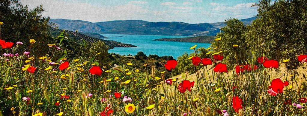 Lake Iznajar Cordoba Andalucia