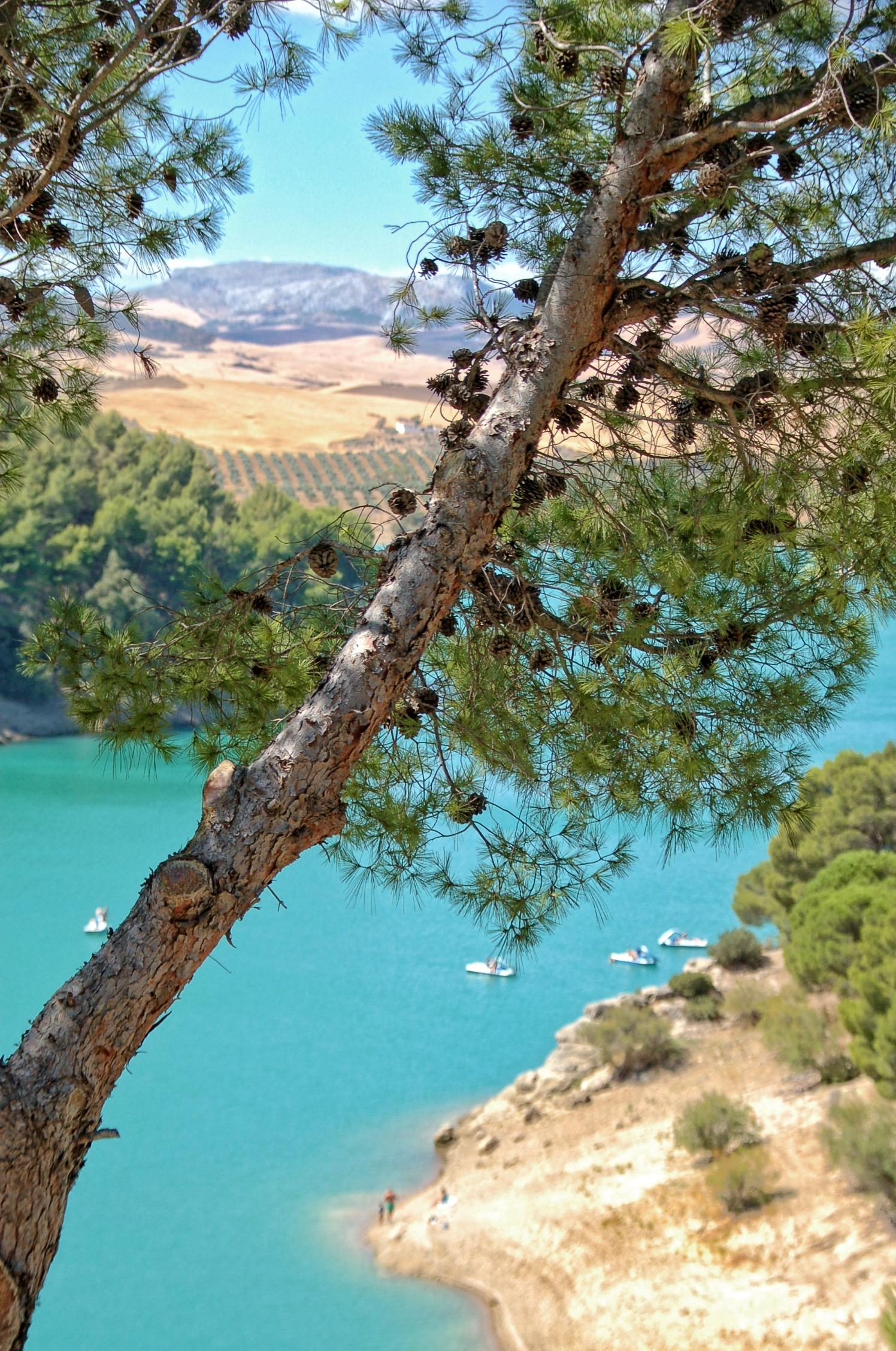 Lake Ardales National Park